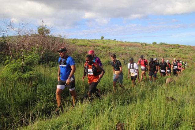 A la queue leu leu dans la savanne saint-pauloise...