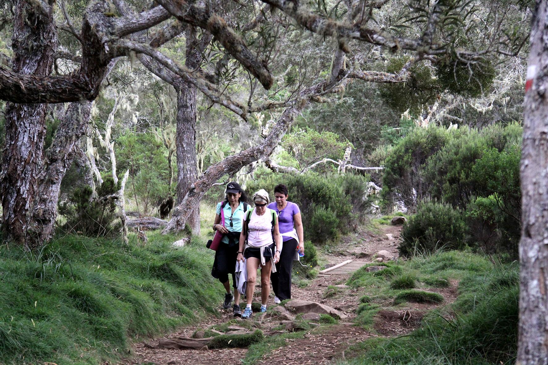 La Réunion, paradis des randonneurs. En parallèle, il est à noter que les gîtes de randonnée du GR peuvent être réservées sur explorelareunion.com