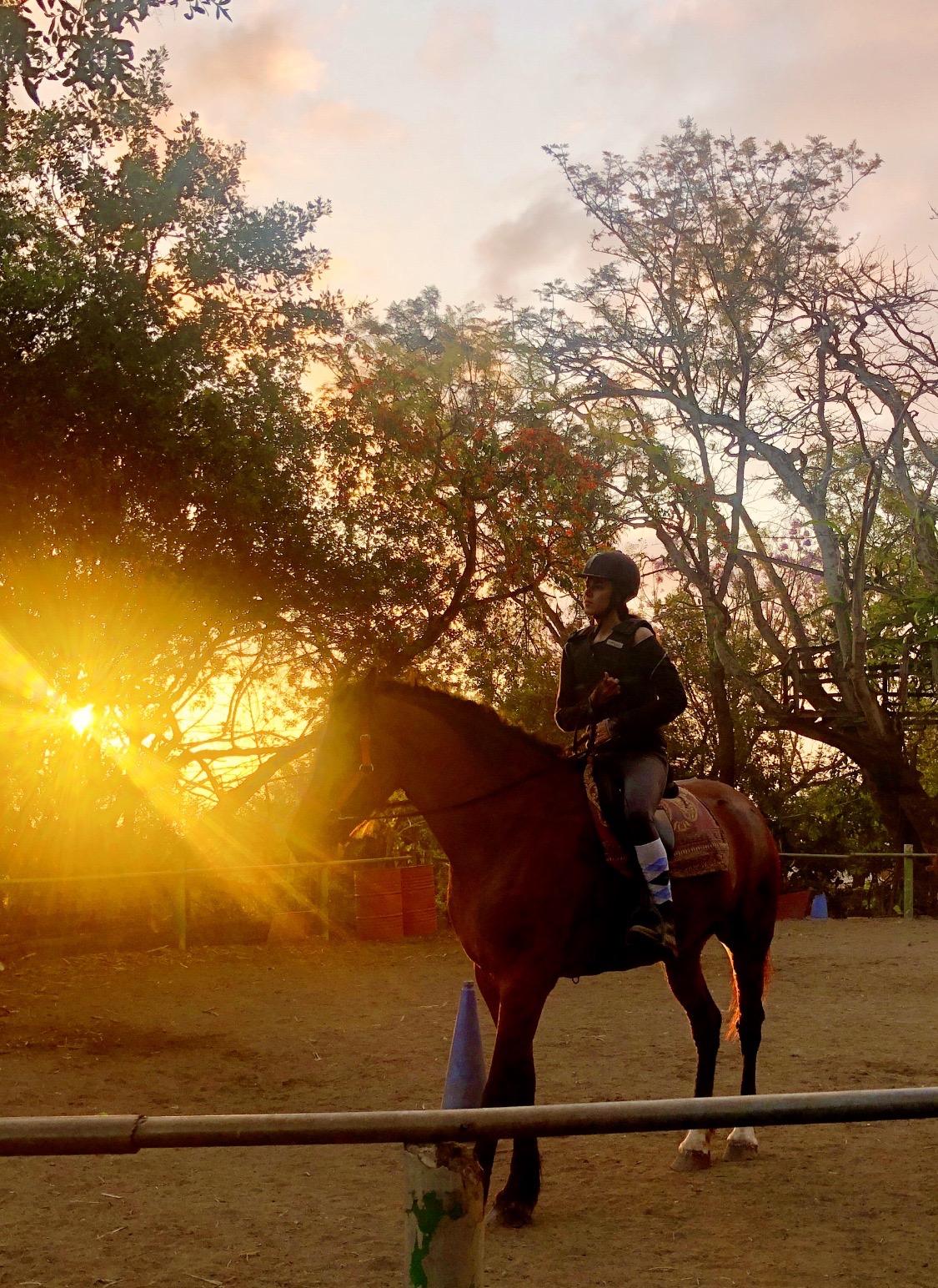 L'équitation, son autre dada
