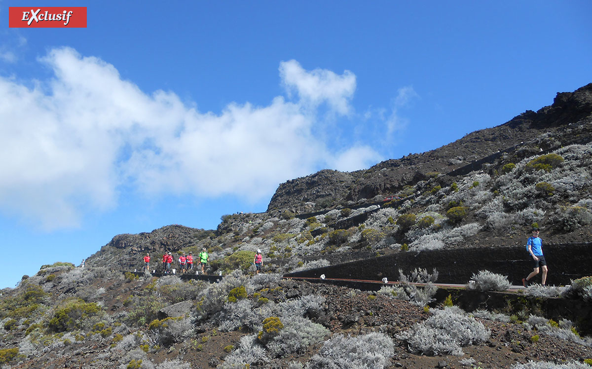 Les Randonnées du Volcan: une évasion complète sur les hauteurs de la Plaine des Cafres